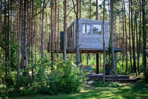 Unique treehouse for two, Orissaare