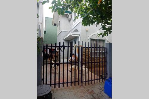House for rent, Dasmariñas