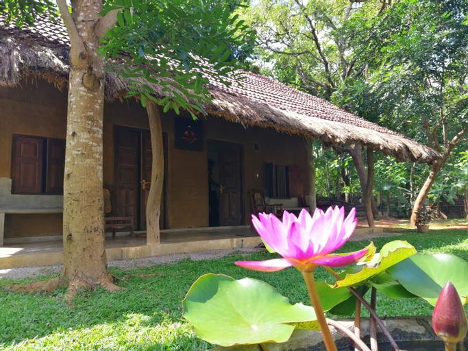 Ama Villa Homestay, Hingurakgoda