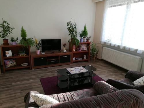 Spacious apartment near Brno. Samostatny byt v RD, Brno-Venkov