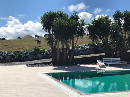Quinta das Flores, Ponta Delgada