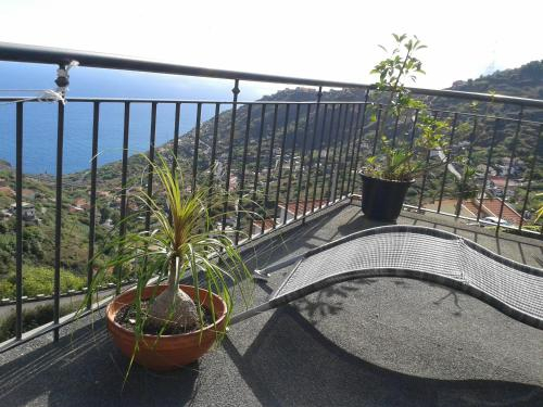 Madeira Villa Liliana, Ribeira Brava