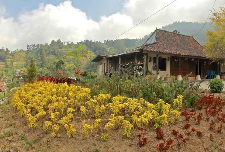 Pangol Hill Camp Center, Bantul