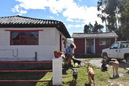 Santuario de bienestar animal SABIA, Latacunga