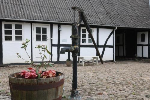 Tøndegarden, Odense