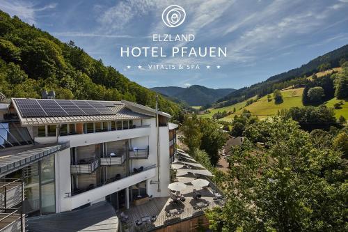 ElzLand Hotel Pfauen, Emmendingen
