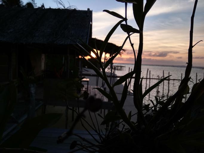 Sunset Homestay Arborek, Raja Ampat