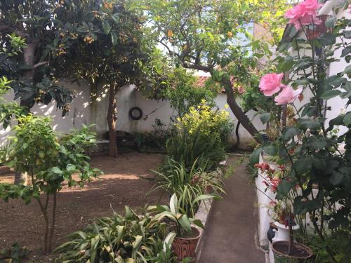 Casa Dª Ana, Reguengos de Monsaraz