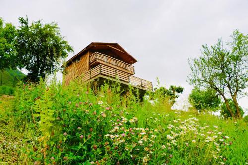 Villa Dabderr Mestia, Mestia