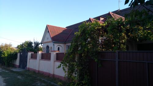 Guesthouse Stuga in transnistrian village Tirnauca,