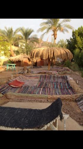 Elbadawy, Nuweiba'
