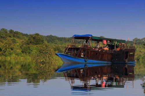 Orangutan River Cruise, Kotawaringin Barat