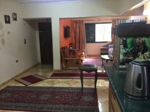 Home in the City, Nasr City 1
