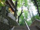 Monzenya, Tondabayashi