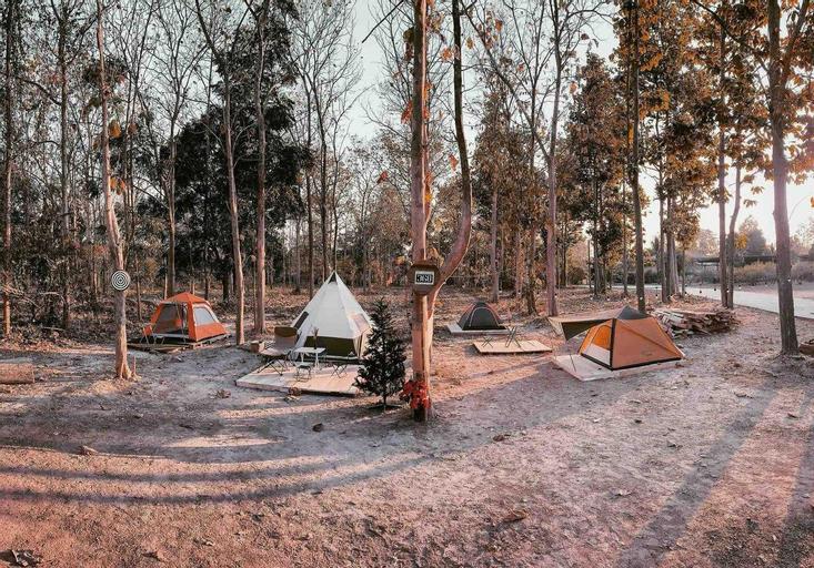 The Godung 369 Alien Teak Woods Magic Camping, Muang Phrae
