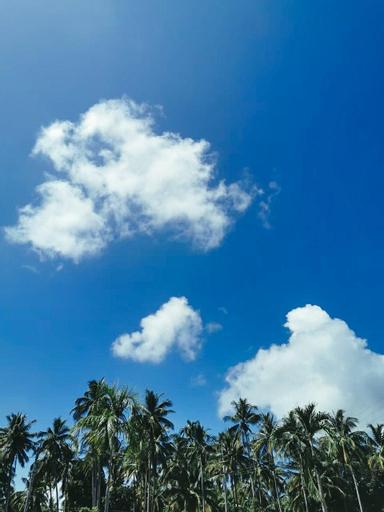 Coco Pino Bankrut Beach Resort., Bang Saphan