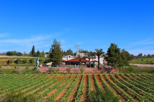Quinta dos Vales Wine Estate, Lagoa