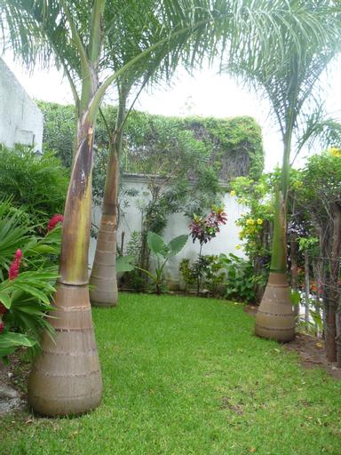 Haina Hostel, Isla Mujeres