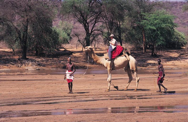 Samburu Intrepids Tented Camp, Isiolo North