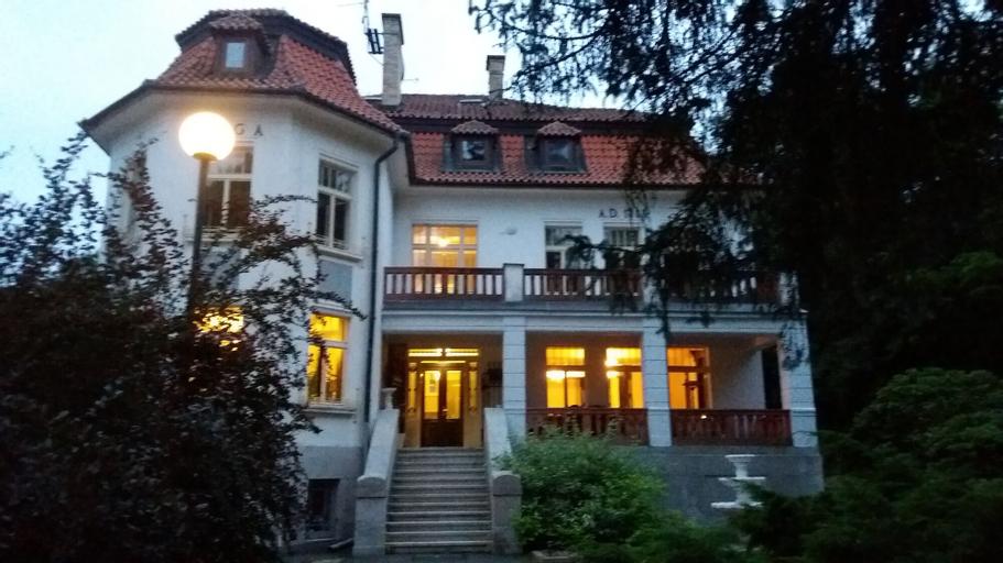 Vila Olga, Kolín
