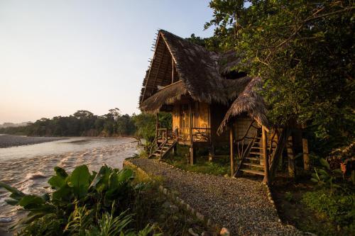 Selina Shared Amazon Tena, Tena