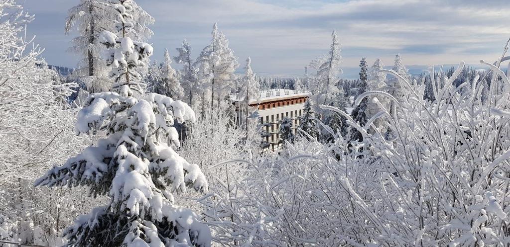 Hotel Crocus, Poprad