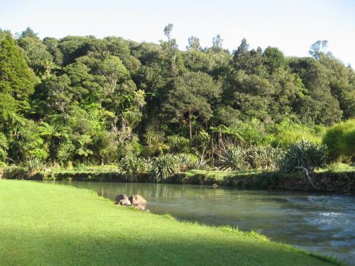 Kauri Coast TOP 10 Holiday Park, Kaipara