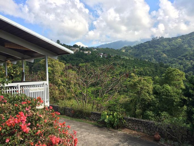 Neita's Nest - Jamaican Bed & Breakfast,