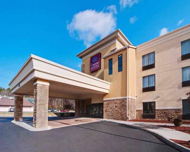 Comfort Suites Salem-Roanoke I-81, Salem