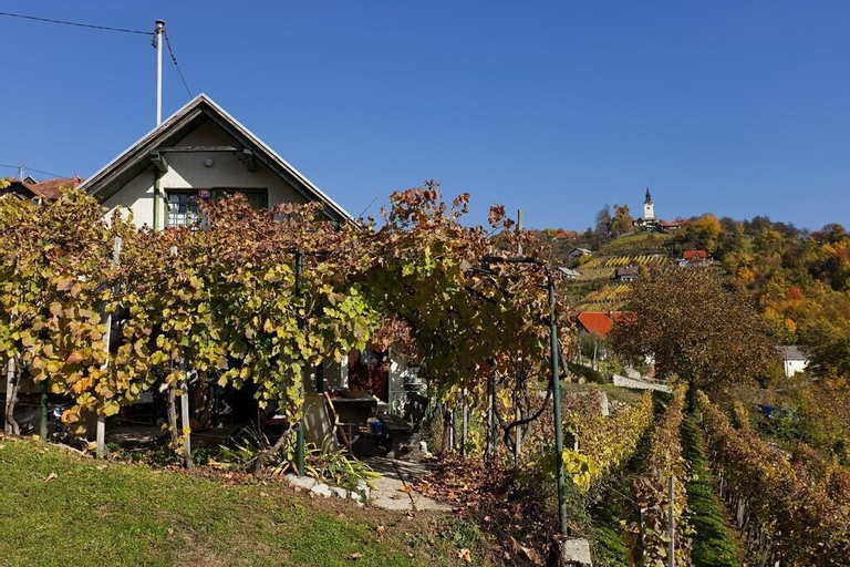 Vineyard Cottage Vercek, Novo Mesto