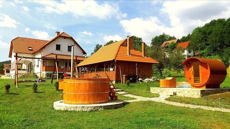 Casa Kiraly Vendeghaz, Rametea