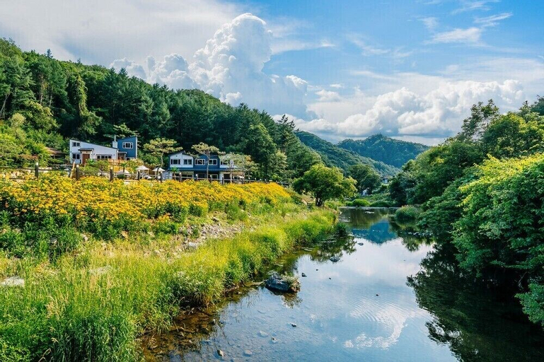 Rosedeil, Hongcheon
