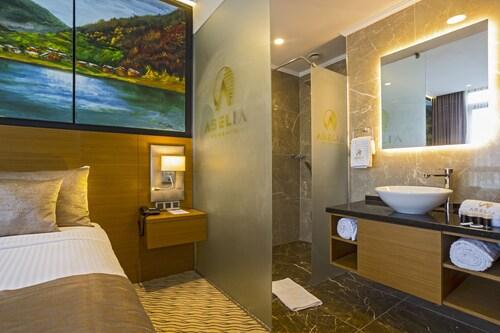 Aselia Hotel Trabzon, Yomra
