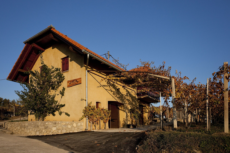 Vineyard Cottage Brodaric, Metlika