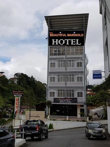 The Beautiful Marigold Hotel, Cameron Highlands