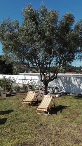 Terrace House Portugal, Ovar