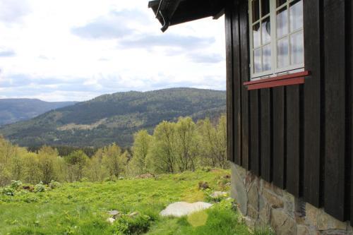 Bjørkebu - 8 person cabin, Ål