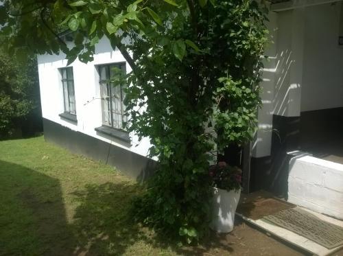 Panda Cottage, Mbabane East