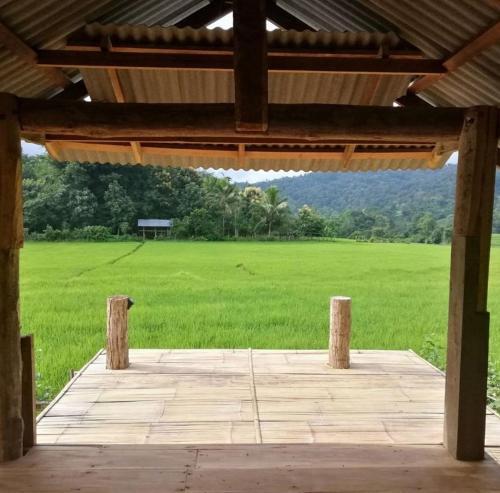 Chinopuu Hut Homestay Muangkong ชิโนปู ฮัท โฮมสเตย์ เมืองคอง เชียงดาว, Chiang Dao