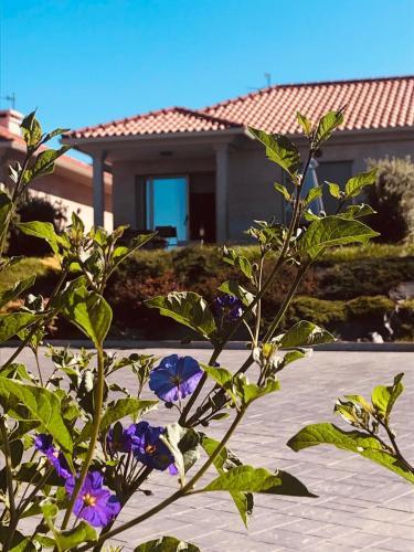Casa con jardin al lado de Playa Hio, Pontevedra