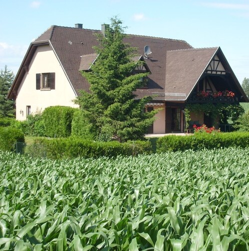 Apartment With 2 Bedrooms In Hochfelden, With Enclosed Garden And Wifi, Bas-Rhin