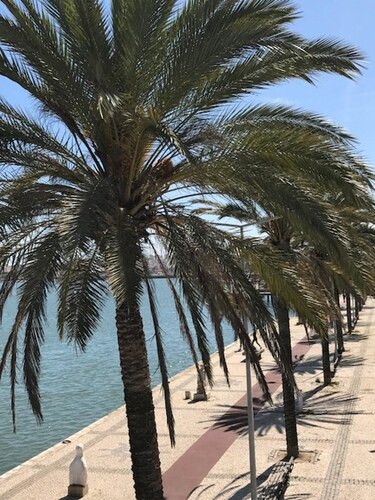 Studio In Portimao, With Wonderful City View, Furnished Balcony And Wifi - 3 Km From The Beach, Portimão