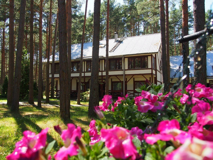 Pleskov, Pechorskiy rayon