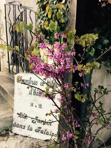 Un Jardin dans la Falaise, Lot