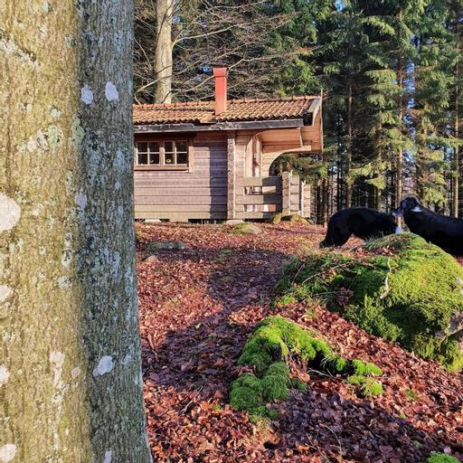 Bokebacken Forest Hotel, Kristianstad