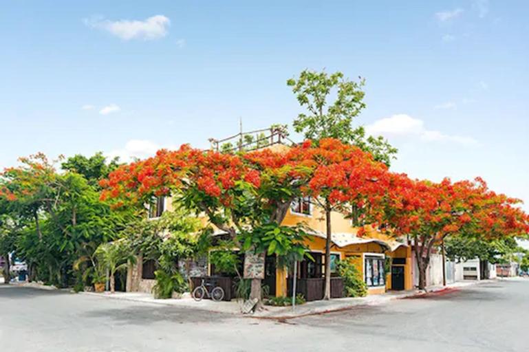 Maison Tulum, Cozumel