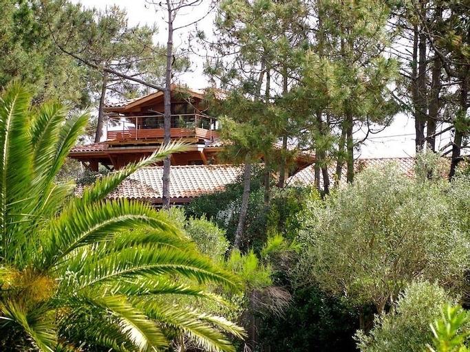 Yamina Lodge, Gironde