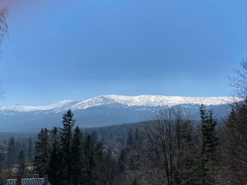 Willa MARANT, Jelenia Góra
