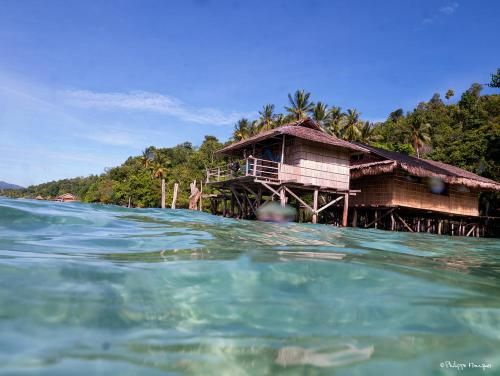 Alter Native Stay, Raja Ampat