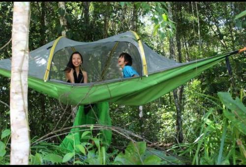 Jungle Eco Reserve, Colón